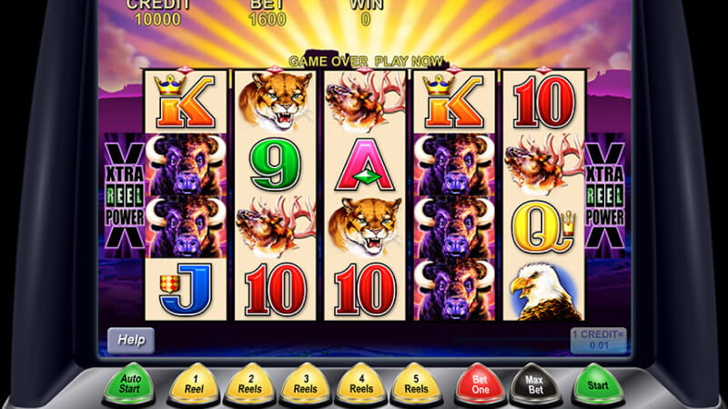 Free Play Buffalo Slot Machine Online