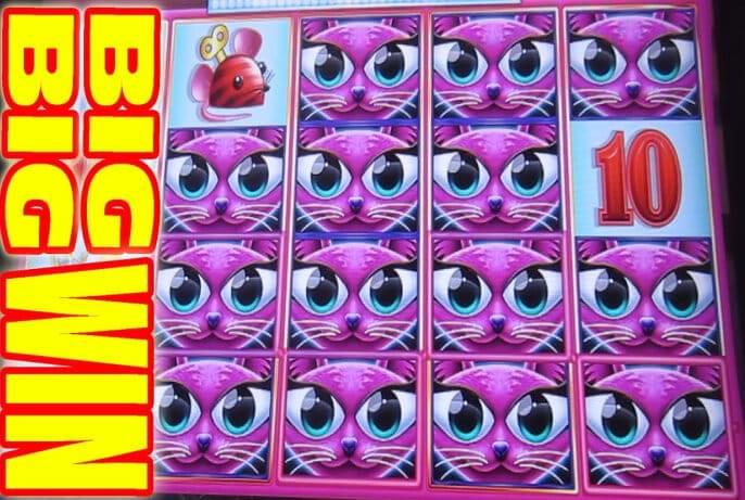 Casino Queenstown Nz Casino