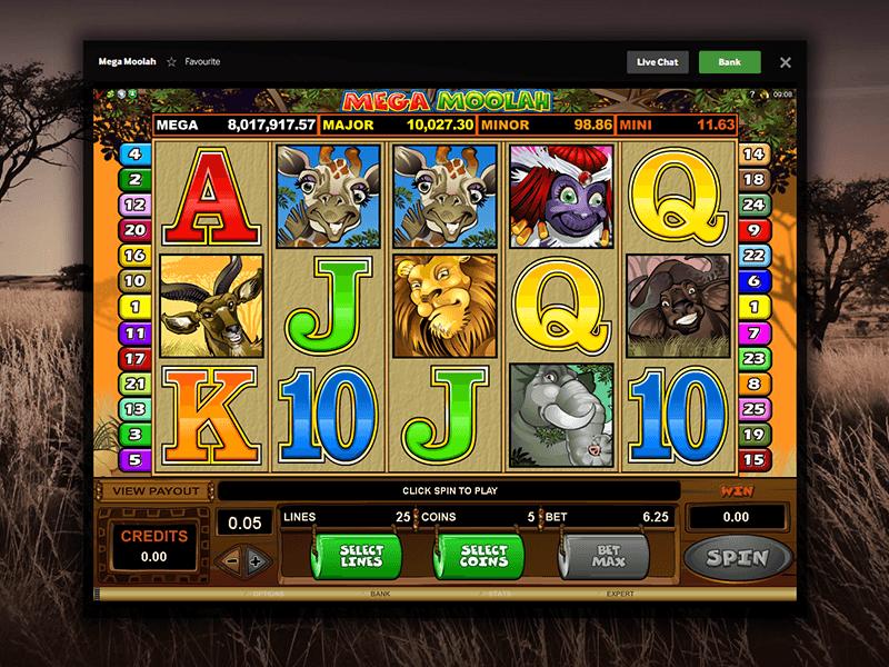 247 poker expert