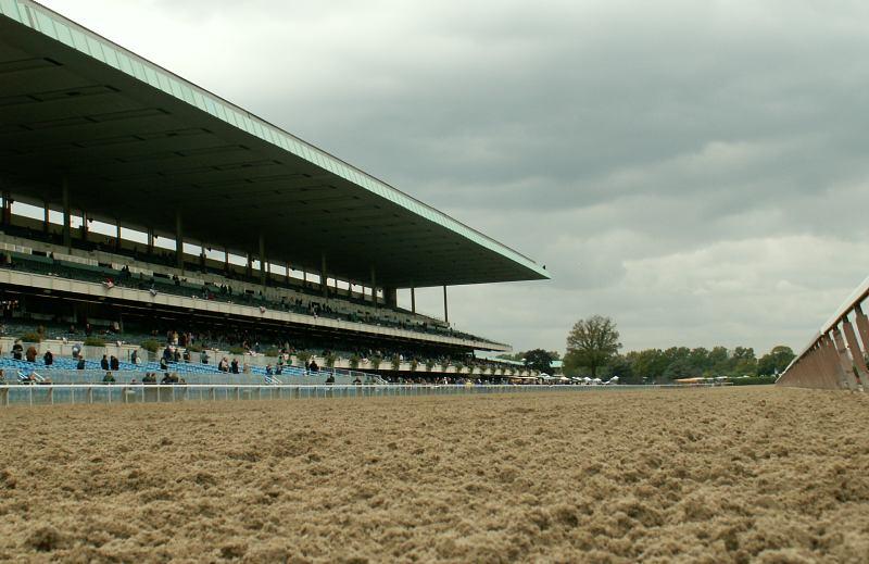 Paddy Power Betfair exchange betting horse racing
