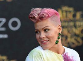 Pink is singing the National Anthem at Super Bowl LII and one of the unusual proposition bets is what hair color she will choose. (Image: Getty)