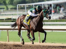 Bolt D'Oro is the early selection by oddsmakers to win the Kentucky Derby at 4/1. (Image: Benoit Photo)