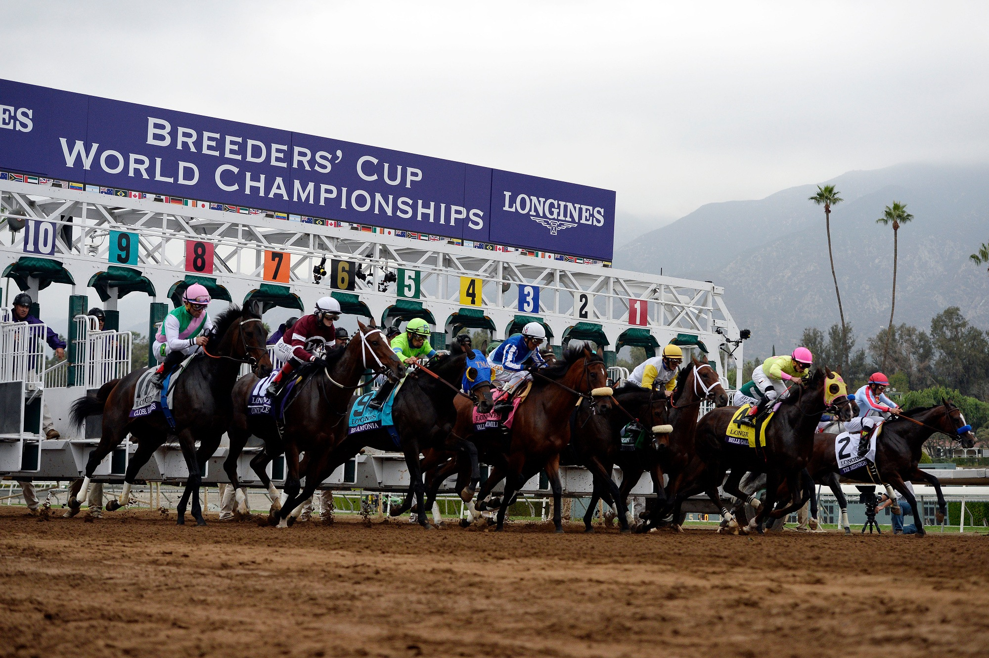 New Rules for $10,000 Breeders' Cup Betting Challenge Address Last Year's Collusion Scandal