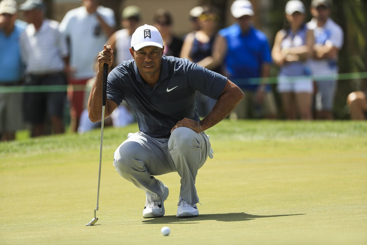 Tiger Woods Pga Tour  Online Play
