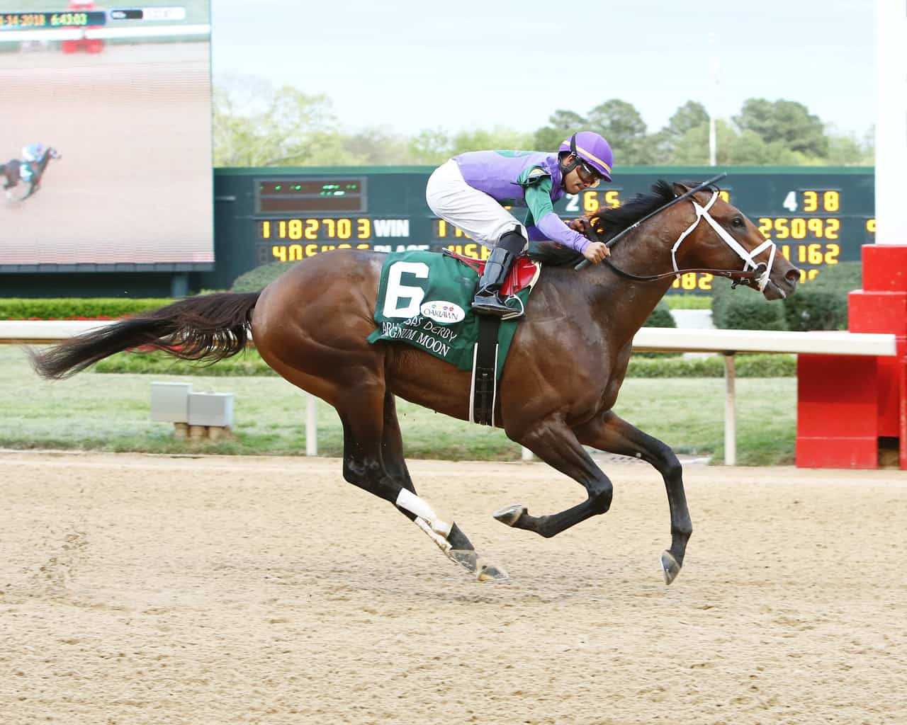 Horse Racing: My Boy Jack, Magnum Moon Fill Out Kentucky ...