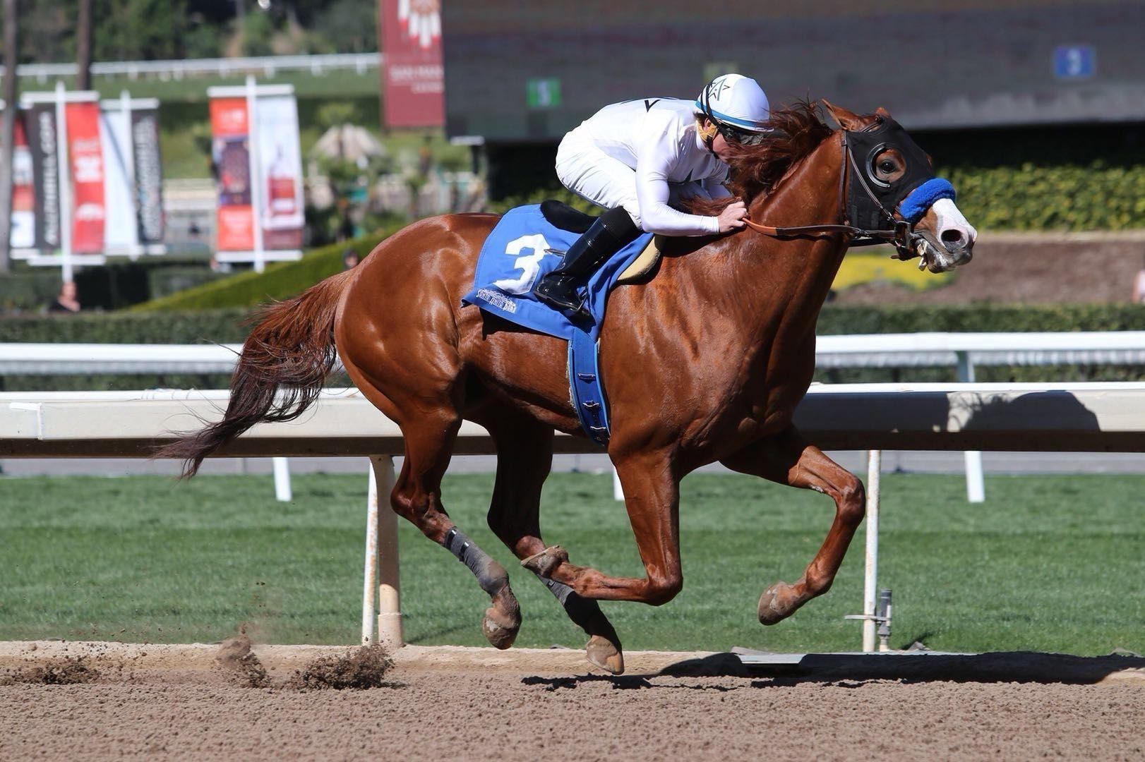 Justify Striving To Improve Kentucky Derby Odds At Santa Anita