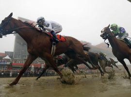 Justify won the second leg of the Triple Crown on Saturday at the Preakness, but only by less than an length. (Image:AP)