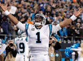 Carolina Panthers quarterback Cam Newton celebrates after a touchdown in the NFC Championship game during the 2015 NFL season. (Image: Jeremy Brevard/USA Today Sports/Reuters)
