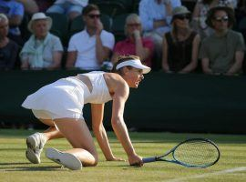 Maria Sharapova was one of five top seeds to fall to high-ranked opponents at the first round of Wimbledon. (Image: Getty)