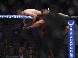 Khabib Nurmagomedov climbs over the Octagon wall after his victory over Conor McGregor in their lightweight title fight at UFC 229. (Image: Chase Stevens/Las Vegas Review-Journal)