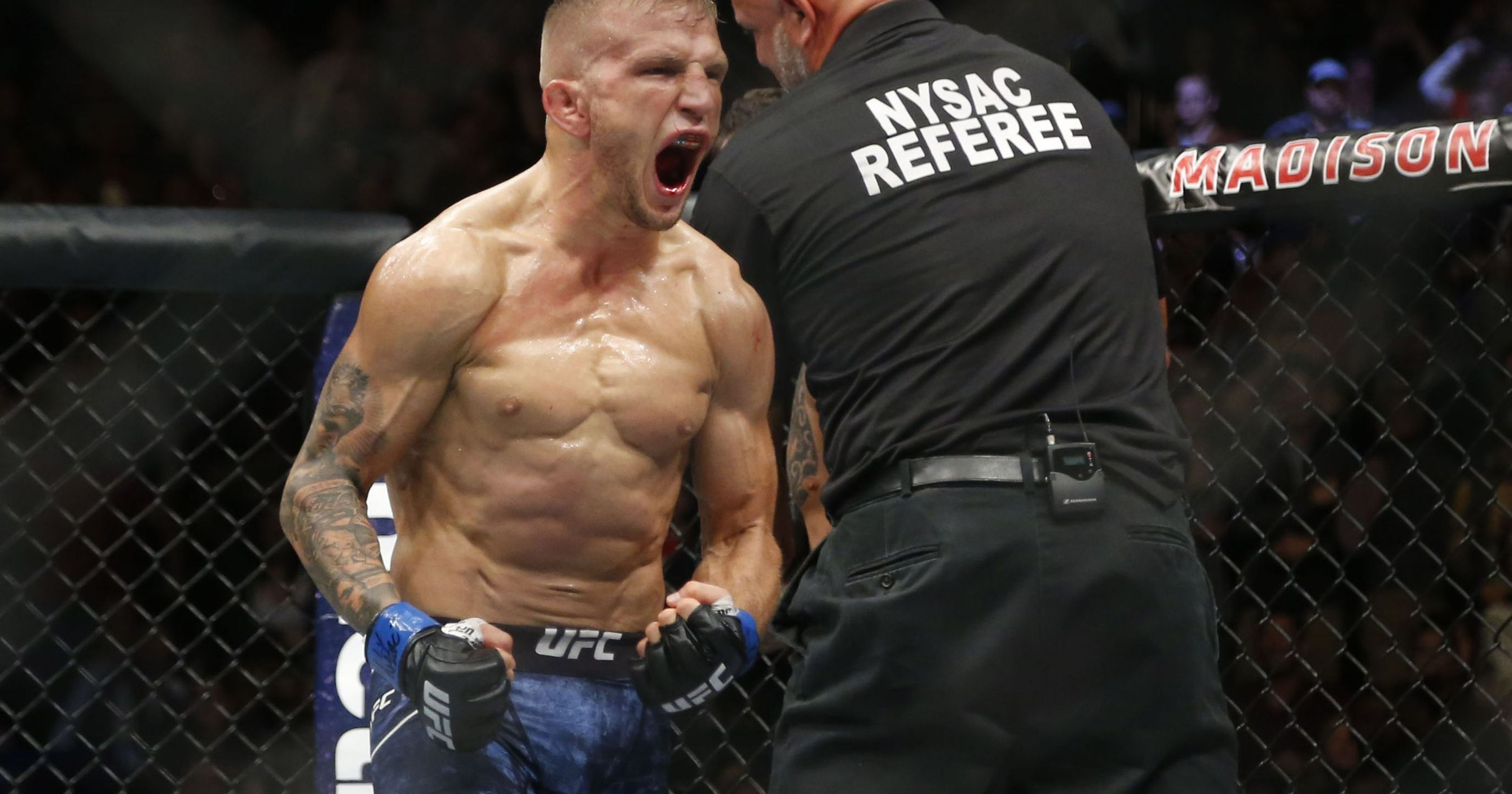 UFC 233 Anaheim postponed