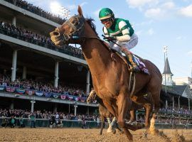 Accelerate, seen here winning the Breeders' Cup Classic at Churchill Downs, may have had a better 2018 than Triple Crown winner Justify. (Image: Alex Evers/The Buffalo News)
