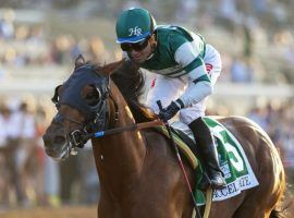 Win or lose, Accelerate is off to the breeding shed after Pegasus World Cup. (Image: AP)