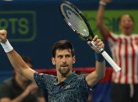 Novak Djokovic is favored to win his seventh Australian Open title this month. (Image: Karim Jaafar/AFP)