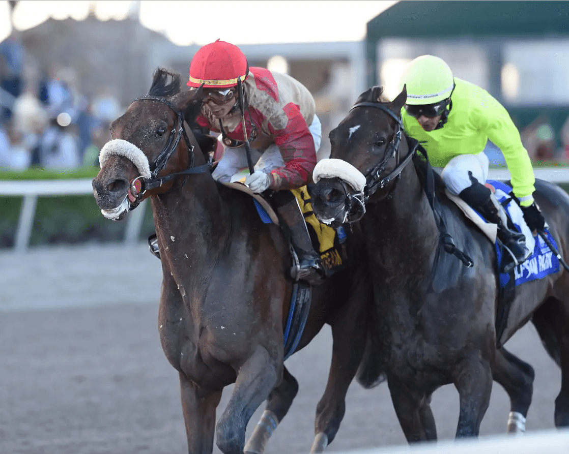 Road to the Triple Crown: Favorites Fail in First Round of Derby Preps