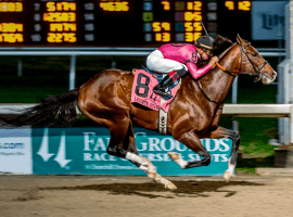 Wow. War of Will ran way ahead of the field to take an easy win -- and 10 Kentucky Derby points -- at the Fair Grounds on Saturday. (Image: Racing Dudes)