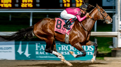 Wow Moment: War of Will Takes Big Easy Win at LeComte