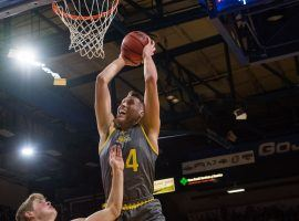 Senior forward Mike Daum from South Dakota State rises for a dunk at Frost Arena in Brookings, SD. (Image: Loren Townsley/Argus Leader)