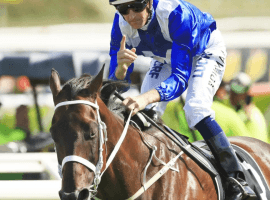 Winx wins once more - 30 in a row for the super mare. (Image: Getty Photo)