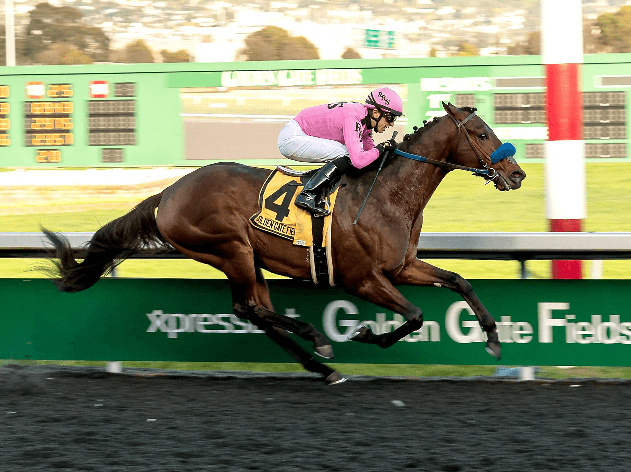 Anothertwistafate in the El Camino Real Derby at Golden Gate