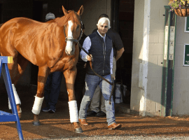 Bob Baffert and 2018 Triple Crown winner Justify Garry Jones /AP