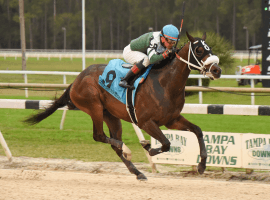 Well Defined doesn't look back to win Davis at Tampa Bay Downs. (Image: SV Photography)