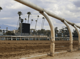 And they'e off. Racing to resume at Santa Anita on March 29. (Image: AP)
