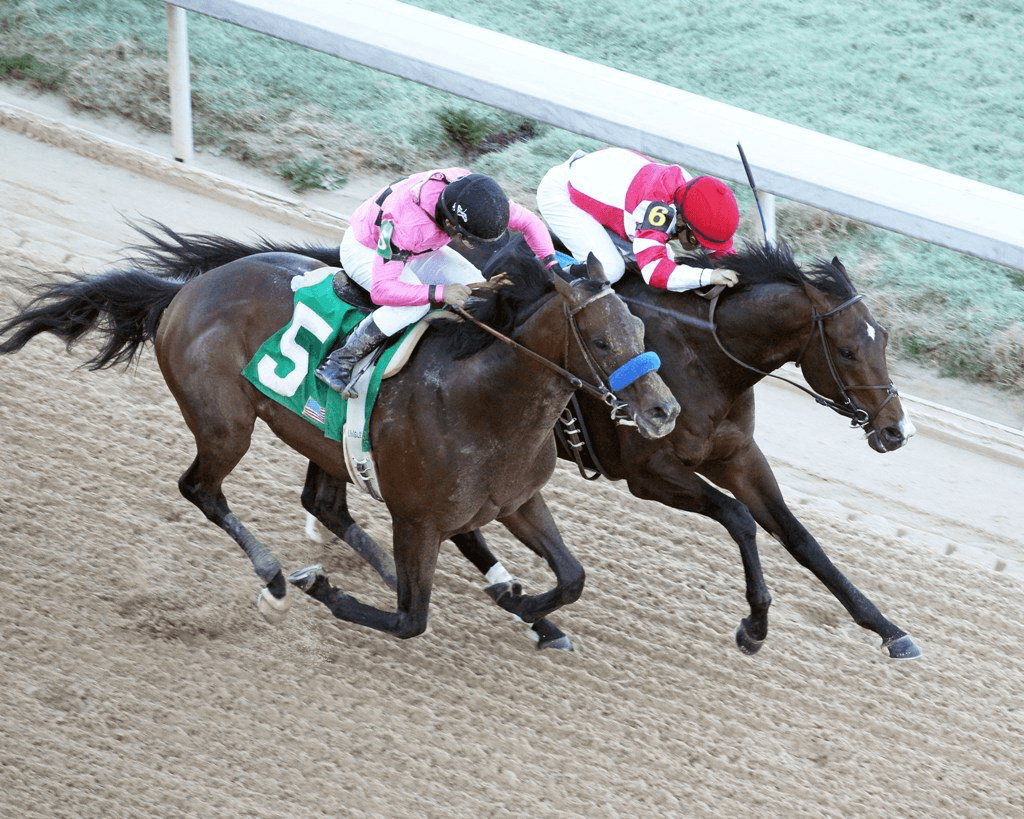 Omaha Beach wins by a nose