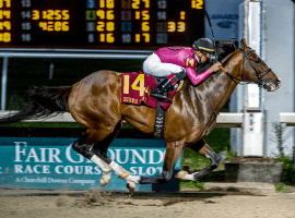 War of Will wows fans winning the Risen Star Stakes in New Orleans. (Image: Hodges Photography)