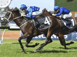 Winx blasts home to win the 2018 George Ryder at Rosehill Gardens Image: (Bradley Photograph)