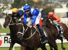 Winx picking 'em up and laying 'em down to win 32nd straight