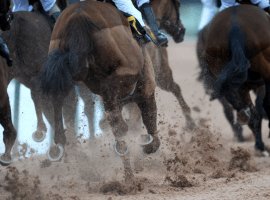 High tech equipment to be used to solve the mystery of equine deaths at Santa Anita (Image: racingtv.com)