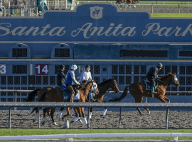 Uncertainty reigns at Santa Anita Park. Image: (Irfan Khan / Los Angeles Times)