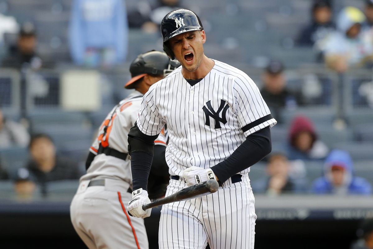 Greg Bird Yankees