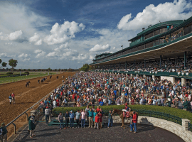 A full house and a full field expected in Saturday's Bluegrass Stakes at Keeneland. (Image: Keeneland Racecourse)