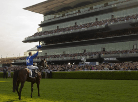 Champion winx and jockey Hugh Bowman salute the crowd at Royal Randwick after her final race.