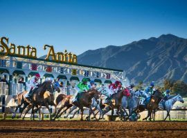 After the 26th death of a horse at Santa Anita last weekend, animal activists were joined by Senator Dianne Feinstein seeking a temporary closure of the iconic race track. (Image: Santa Anita)