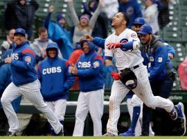 Wilson Contreras of the Chicago Cubs celebrates after hitting a walk-off home to defeat the Milwaukee Brewers in 15 innings at Wrigley Field. (Image: (Nam Y. Huh/AP)