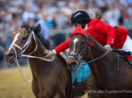 """Kaymarie Kreidel and Witch  Hunter make the """"catch"""" after Preakness Stakes at Pimlico. (Image:"""