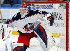 Columbus Blue Jackets goalie Sergei Bobrovsky is one of the coveted players when free agent signing begins on Monday. (Image: AP)