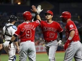 Shohei Ohtani, the DH for the LA Angels, is congratulated by teammates after he hit a first-inning home run against the Tampa Bay Rays at Tropicana Field. (Image: Monica Herdnon/Tampa Times)