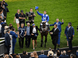 Winx along with her connections say goodbye to her adoring fans as she captures her 33rd consecutive victory . Image: (Agence France-Presse)