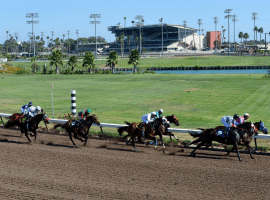 Southern California's troubled Thoroughbreds merry-go-round shifts to Los Alamitos this week. (Image:Jeff Gritchen, Orange County Register)