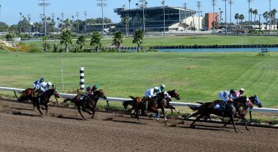 California Legislature Boosts Horse Racing Board's Regulatory Muscle