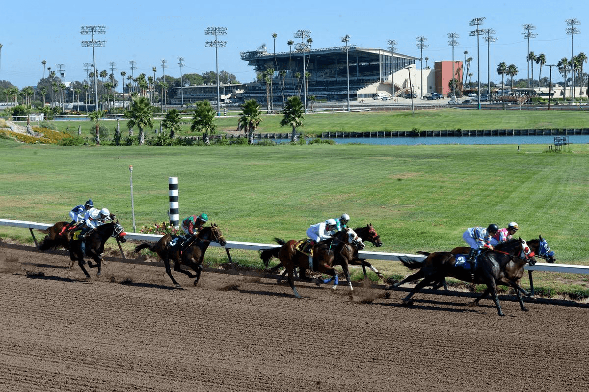 California racing at Los Alamitos