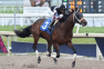Ohio Derby at Thistledown: Hough Horse Global Campaign Ready to Fire
