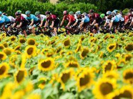 The 2019 Tour de France as it rolled from Toulouse > Bagneres-de-Bigorre. (Image: AP)