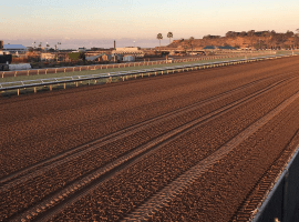 Increasing equine safety top priority as Del Mar begins 80th season. Image: (Alex Ashlock/Here & Now)