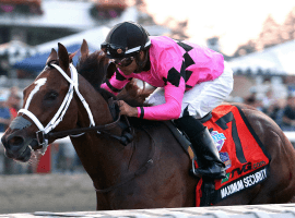 Maximum Security with Luis Saez at the controls reassumes leadership in three-year-old division. (Image: AP)