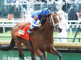 Mr. Money grabs the cash in the Pat Day Mile, hist first of three straight stakes wins. ( (Photo: Courtesy of Coady Photography/Churchill Downs))